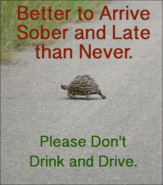 Roadside DUI Tests Don't Drink and Drive